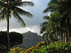 12 Step Programs in Hawaii