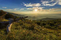 12 Step Programs in Virginia