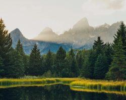 12 Step Programs in Wyoming