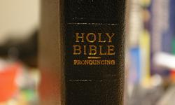 Bible_side-view